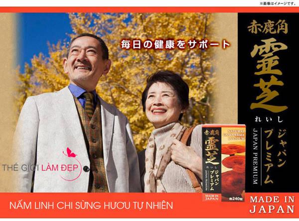 Nấm Linh Chi Đỏ Sừng Hươu Nhật Bản